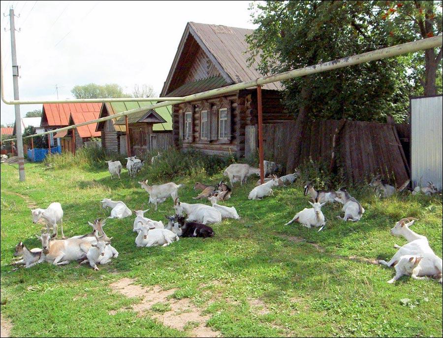 Chuvashia Republic, Russia village scenery