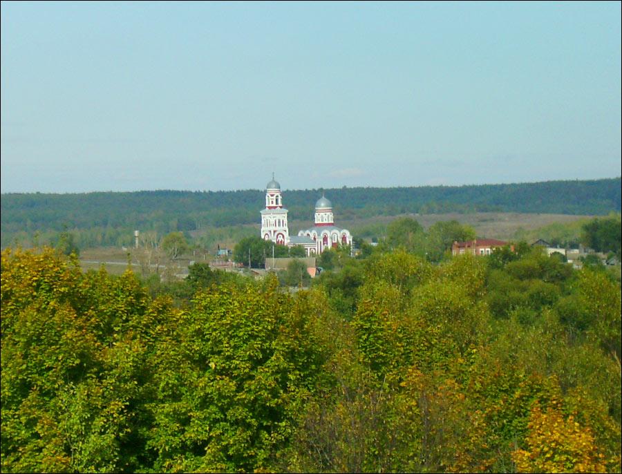 Penza Russia  City pictures : Photographs Penza Russia borzii