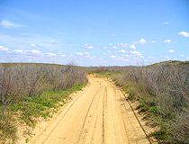 Steppe road in the Astrakhan region