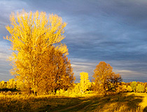 Golden autumn in Bashkiria