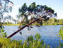 Beautiful nature of the Irkutsk region