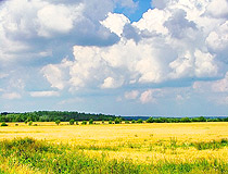 Leningrad region nature