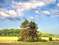 Lipetsk region nature