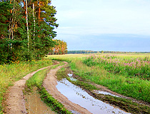Country road in the Moscow region