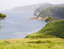 Primorye region nature view