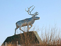 Reindeer monument in Salekhard
