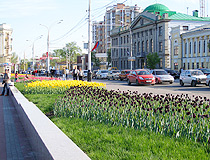 Flower beds in Tambov
