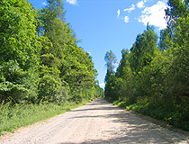Forest road in the Tula region
