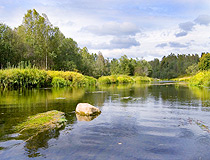 Tver region nature view