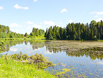 Pond in Udmurtia