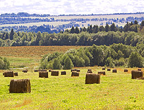 Haymaking time in the Yaroslavl region